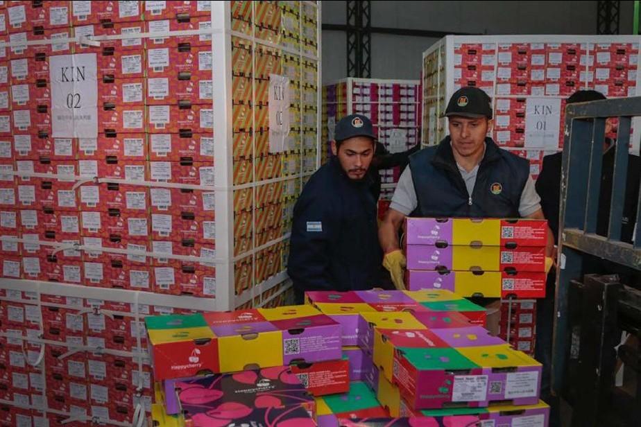 Salen 160 toneladas de cerezas con destino a China