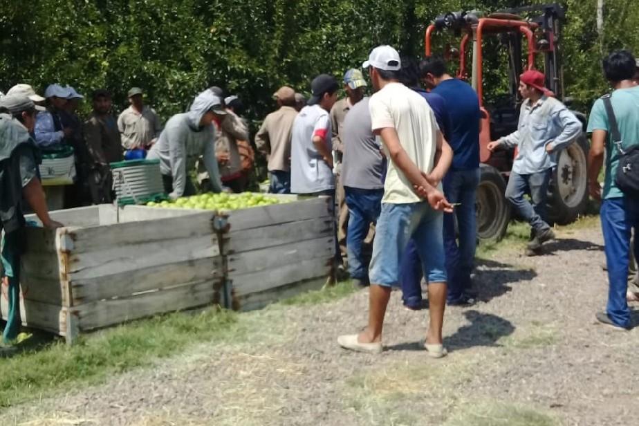 La Provincia intervino en un caso grave de incumplimiento sobre condiciones laborales en Valle Medio