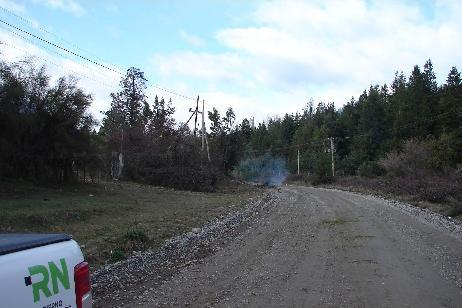 Imagen-El EPRE promueve un plan provincial de poda preventiva para evitar cortes de electricidad