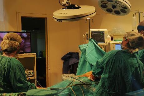 Donación de órganos: cómo se aplicará la Ley Justina en Río Negro